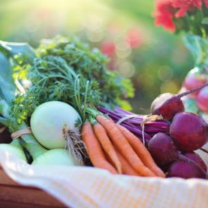 SO – Bæredygtige fødevarer